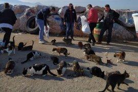 Karşıyaka'da kuşlar ve sokak hayvanları unutulmadı...