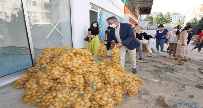 Gaziemir'de 10 ton patates ihtiyaç sahiplerine dağıtılmaya başlandı