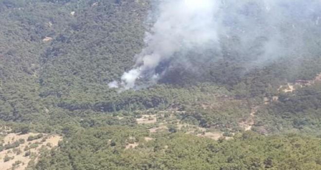Karagöl'deki yangın korkuttu