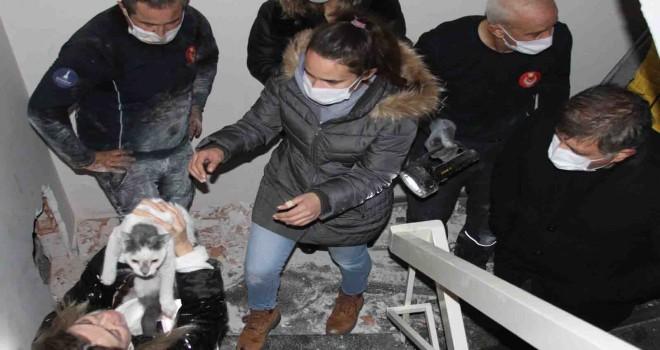 Karşıyaka'da iki bina arasına sıkışan kedi 42 gün sonra kurtarıldı