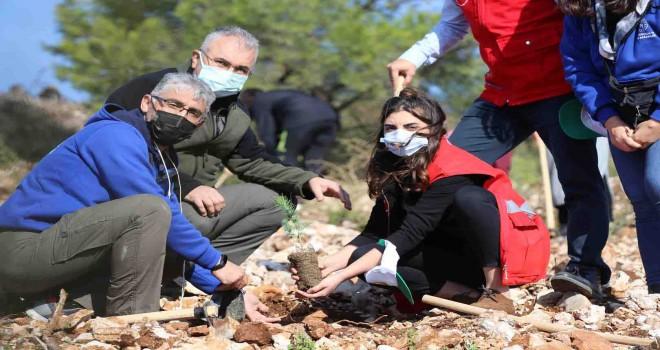 İzmir'de 30 noktada 20 Bin fidan toprakla buluştu