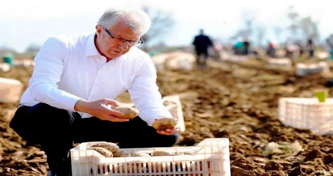 Patates üreticisine destek, belediyelere çağrı