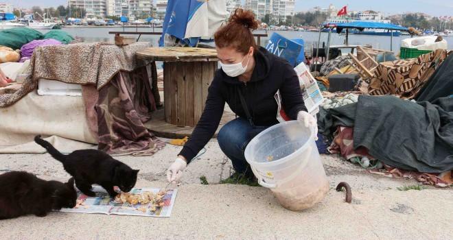 Karşıyaka'da can dostlara beslenme desteği