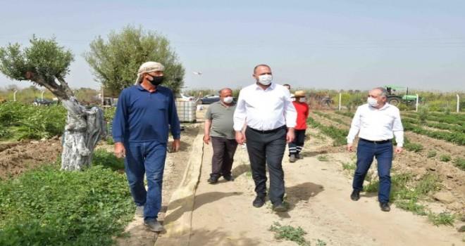 Başkan Gümrükçü Çiftçiler Günü'nü tarlada kutladı