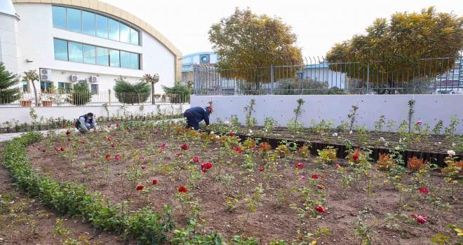 Karşıyaka'ya yeni gül bahçesi