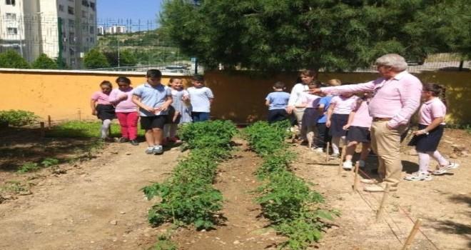 Karşıyakalı öğrenciler 500 meyve fidanı büyüttü