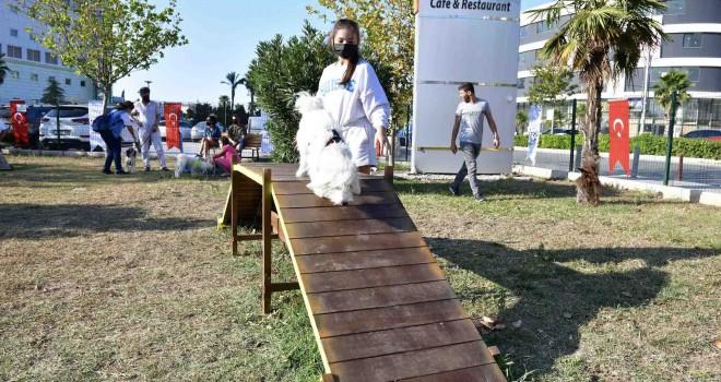 Pati Dostları Festivali Çiğli'de 4. kez kapılarını açtı
