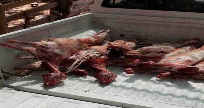 Kaçak et deposuna müdahale