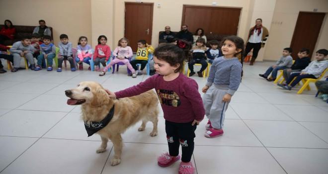 Sevimli köpekler Karşıyakalı miniklere hayvan sevgisi aşılıyor