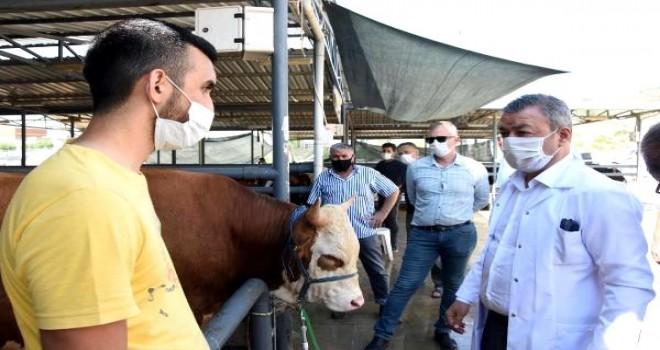 Karşıyaka'daki kurbanlık hayvan satış yerlerine kontrol