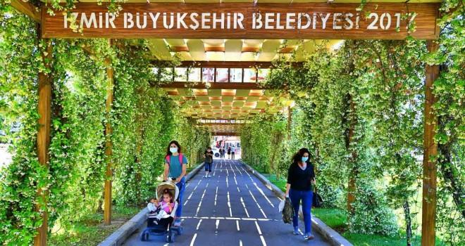 İzmir'in ulaşım ve yaya aksları yasemin kokuyor