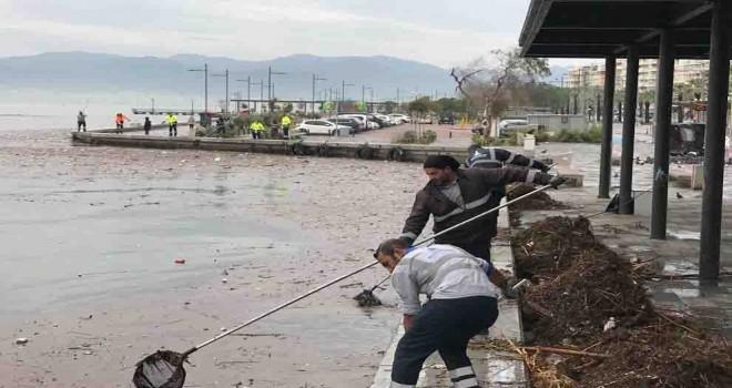 İzmir Büyükşehir ekipleri yaraları sarmak için sahada