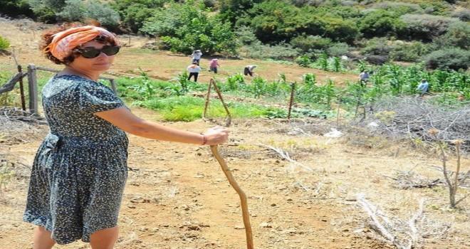 Köy-Koop İzmir: Yasayı uygulayın, ormanları köylüye bırakın