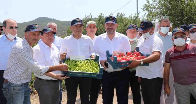 Yerli ve Milli sebzeler Tarla Günü'nde tanıtıldı