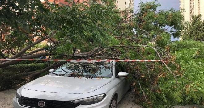 Fırtına Karşıyaka'da da etkili oldu
