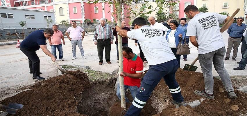 Karşıyaka'da hedef 5 yılda 100 bin fidan dikmek...