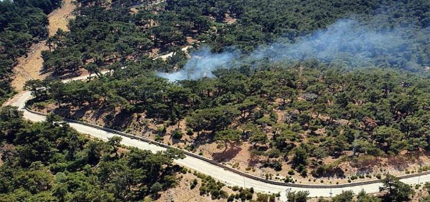 Yamanlar'daki yangında 1 dönümlük alan zarar gördü