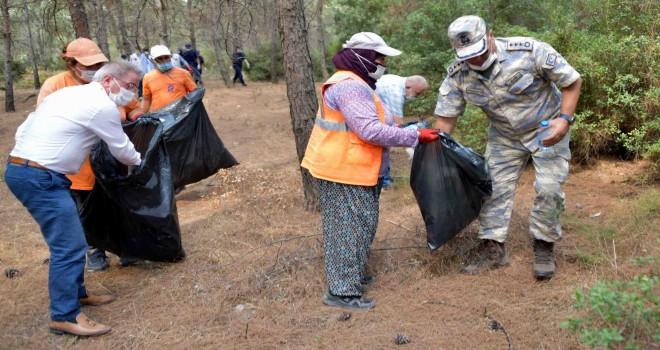 Aliağa'da orman temizliği devam ediyor