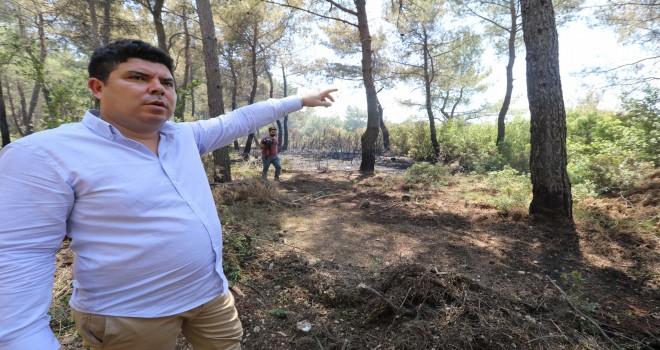 Başkan Kılıç'tan uyarı: Ormanlarımızı yangınlarla heba etmeyelim