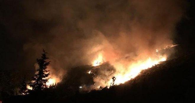 Karşıyaka'daki yangında 15 dekarlık alan zarar gördü