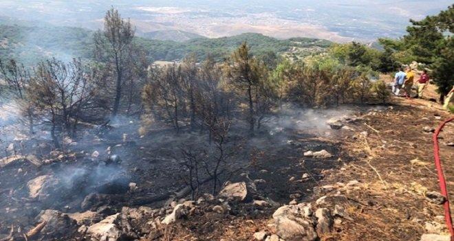Piknik yaparken ormanı yaktılar...